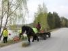 Hästen passar på att äta medan han väntar på lass